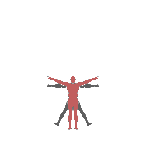 vitruvian-spinner